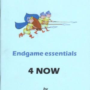 Endgame Essentials 4 NOW